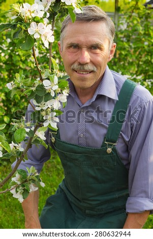 Man advanced in years at the flowering apple trees - stock photo