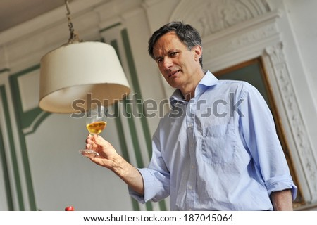 Man analyzing a glass of wine - stock photo