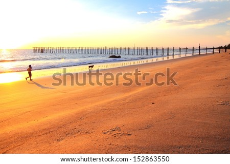 Man and dog running on the beach at sunset - stock photo