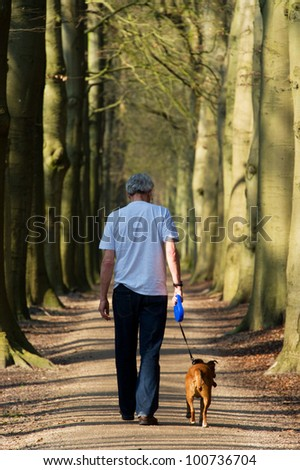 Man and dog walking in forest lane - stock photo
