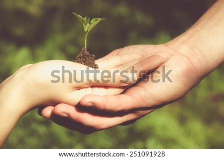Man and woman holding young tree in hands against spring green background. Environmental protection concept - stock photo