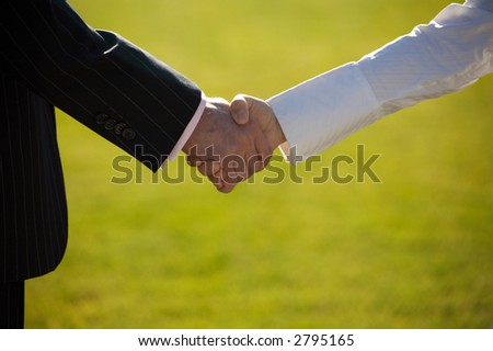 Man and woman shaking hands - stock photo