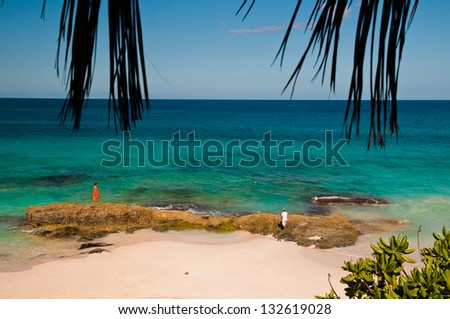 Man and woman standing on rocks on a tropical beach in the bahamas, photograph is framed by palm fronds - stock photo