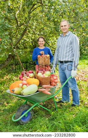 Man and woman with crop of vegetables in garden - stock photo
