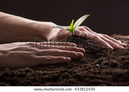 Man care about green young sprout growing in good brown soil. New life concept - stock photo
