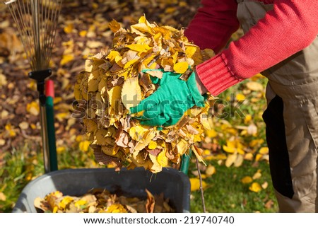 Man cleaning garden from autumnal leaves, horizontal - stock photo