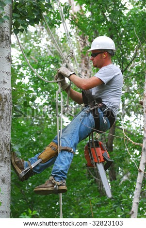 Man climbing tree to cut branches. - stock photo