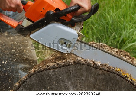 Man cuts a fallen tree. - stock photo