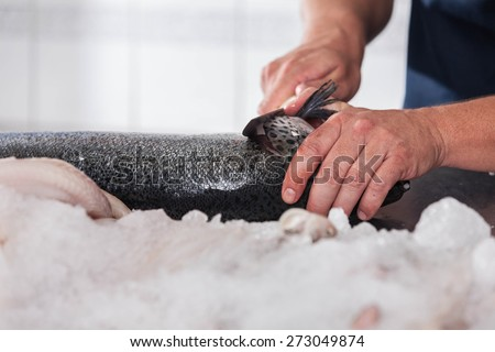 Man cutting a fish