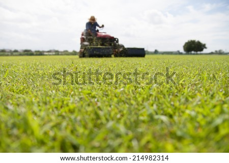 man cutting grass with lawnmower  - stock photo
