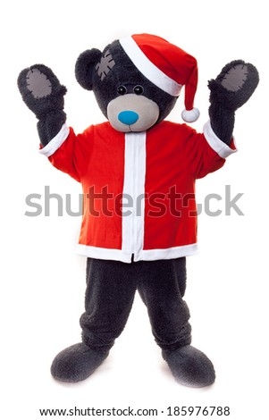 man dressed as a teddy bear christmas on a white background  - stock photo