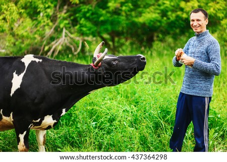 Man feeding a cow with bread in the village.