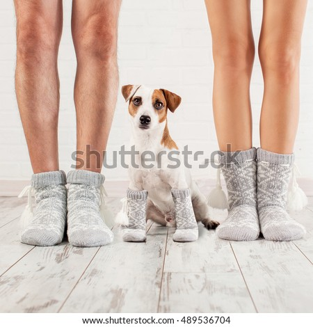 Man, female and dog in socks. Warm clothing family home