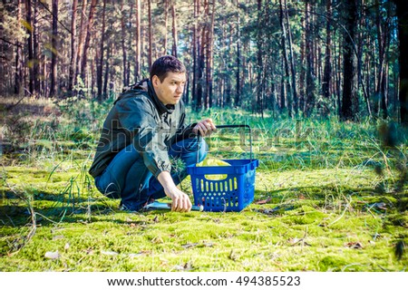 Man gathering mushrooms in the woods