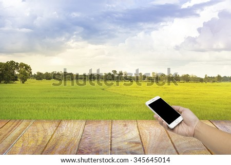 Man hand hold Smart Phone,Cell phone, Mobile phone, on the Thai rice farm background. - stock photo