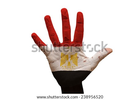 man hand palm painted flag of egypt - stock photo