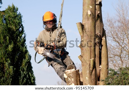 Man hanging in a tree, starting a chainsaw - stock photo