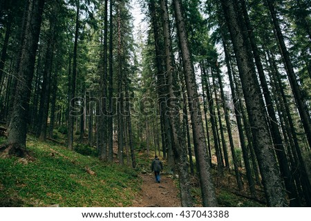Man hiker walking  in the Misty mountain forest - stock photo