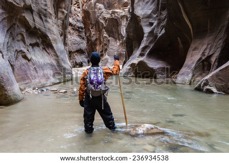 man hiking the Narrows in Zion National park with the virgin river flowing through the slot canyon - stock photo