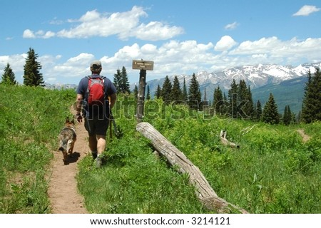 Man hiking with dogs - stock photo