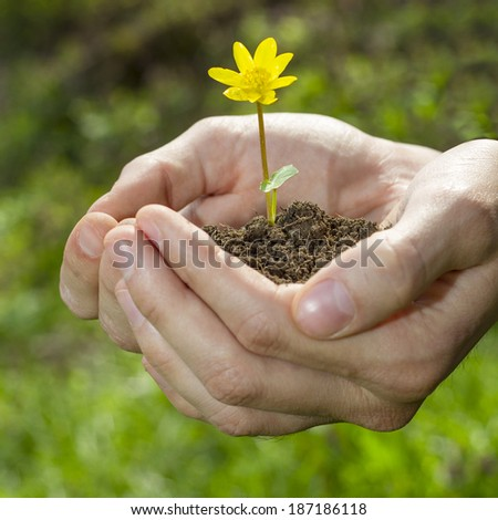 Man holding a small flower in his hands