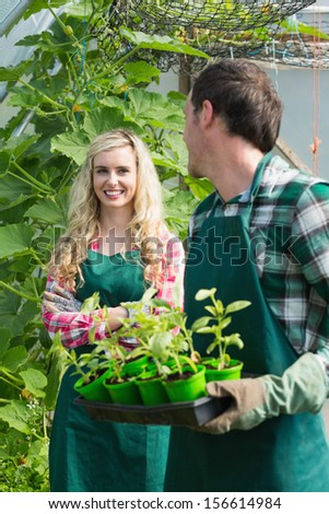 Man holding carton of small plants and turning to his smiling girlfriend in a greenhouse - stock photo