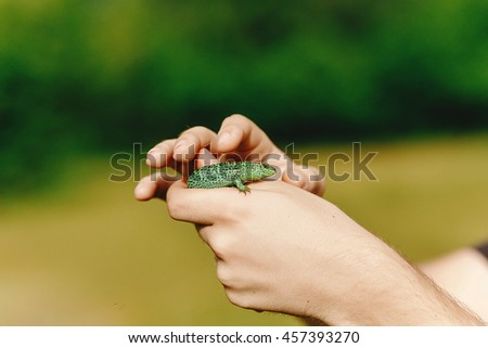 man holding green lizard in his hand in summer mountains,  travel  concept, space for text, discover and explore wildlife