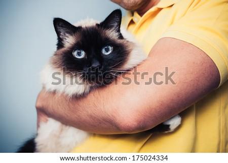 Man holding his Birman cat - stock photo
