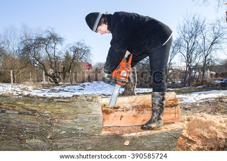 Man holding power saw and making log fire wood in the yard. In early sunny spring day preparation of firewood for autumn and winter. Renewable resource of energy.