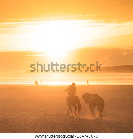 Man horse riding on the beach at sunset. - stock photo