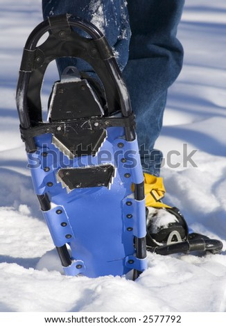 Man in blue jeans raises bottom of snowshoe out of snow
