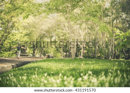 Man in Park and focus on field