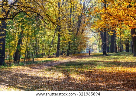 Man in red jacket goes on the trail in a beautiful autumn forest