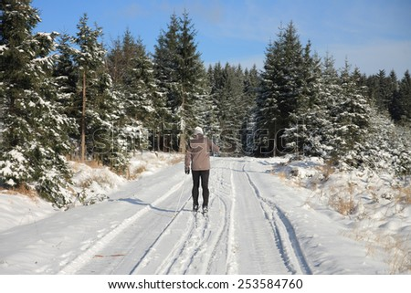 Man in ski track in forest  - stock photo