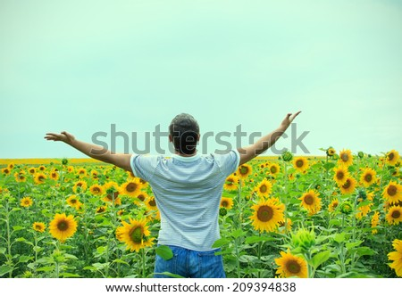 Man in the field of sunflowers - stock photo