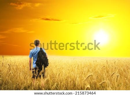 Man in yellow wheat meadow. Conceptual design. - stock photo