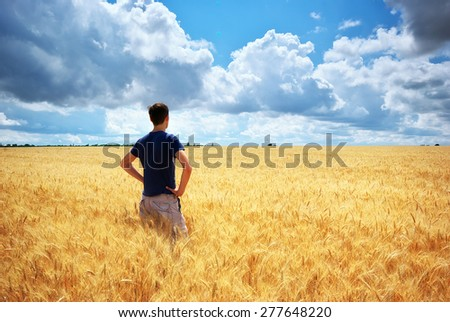 Man in yellow wheat meadow. Conceptual design. Agricultural scene. - stock photo
