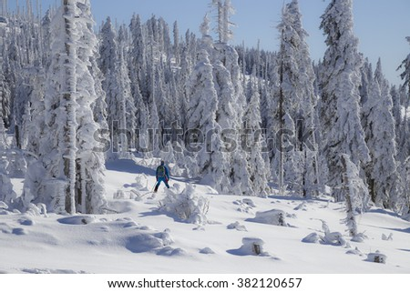 Man is skiing in the beautifully snow covered Bavarian Forest