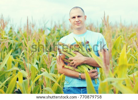 Man is standing in cornfield with hands full of corn cobs