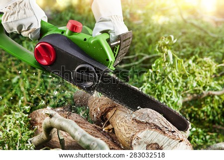 man (lumberjack) cutting trees using an electrical chainsaw in forest - stock photo