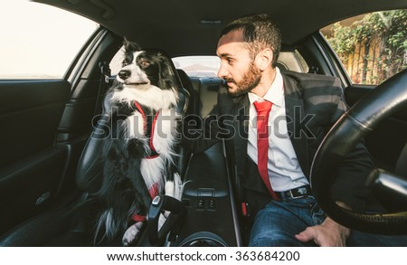 Man motivate his dog before canine competition in the car. Concept about animals and people - stock photo