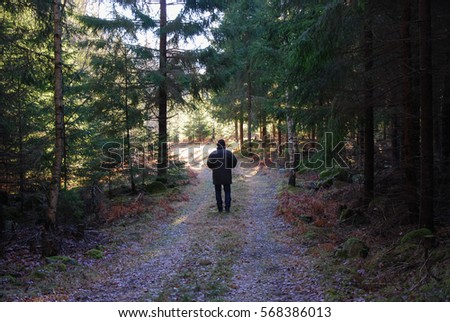 Man on a relaxing walk at a footpath in a spruce tree forest
