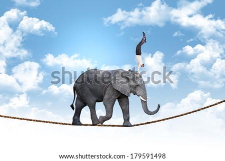 man on acrobat elephant abstract concept - stock photo