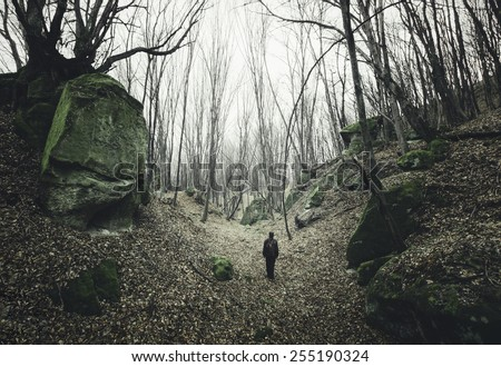 man on dark forest path with twisted trees - stock photo
