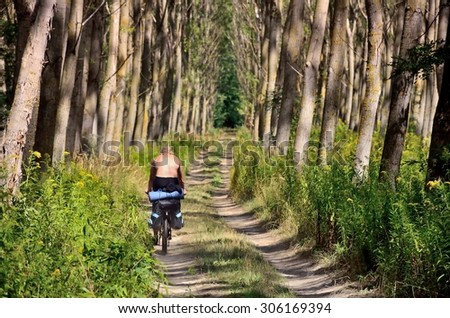Man on the bicycle and bag passing through alley of trees in forest during summer trip