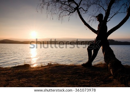 Man on tree. Silhouette of  lone man sit on branch of birch tree in front of the sunset at shoreline.