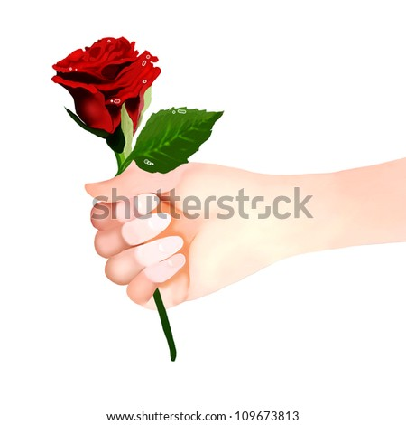 Man or Woman Holding A Beautiful Red Rose for Lover, on White Background