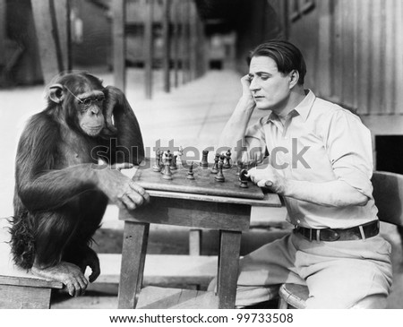 Man playing chess with monkey - stock photo