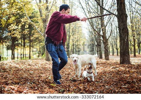 man playing with dogs in park. Caucasian man walking with dogs in autumn park - stock photo