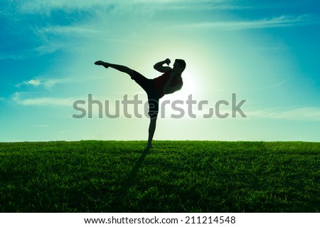 Man practicing martial arts outdoors. - stock photo